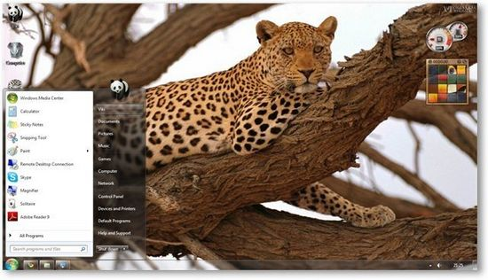 Wild Animals Theme for Windows 7