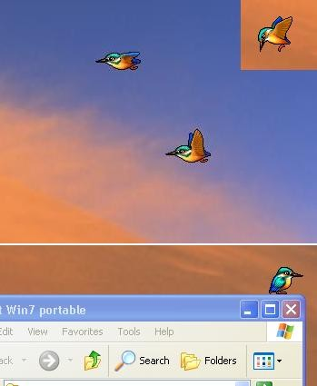 Birds on desktop