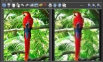 FotoSketcher – Automatically Turn photos into Paintings, Drawings and Cartoons