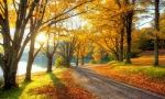 Colorful, Beautiful Pathway Wallpapers for Desktop