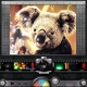Pixlr-o-matic – Instagram look alike software for Windows