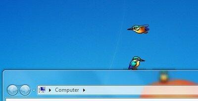 Bird on Desktop